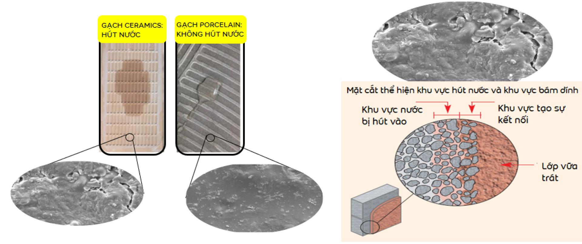 kỹ thuật dán gạch tường cũ - cơ chế bám dính